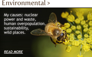 Find out more about Environmental Work