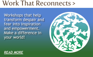 Find out more about the Work That Reconnects